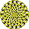 amazing visual illusions and eye tricks